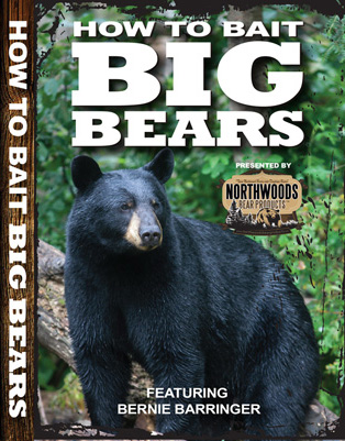 bear-cover-front
