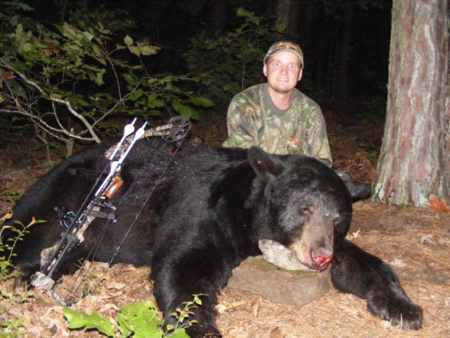 Your Best Bets for Truly Big Bears