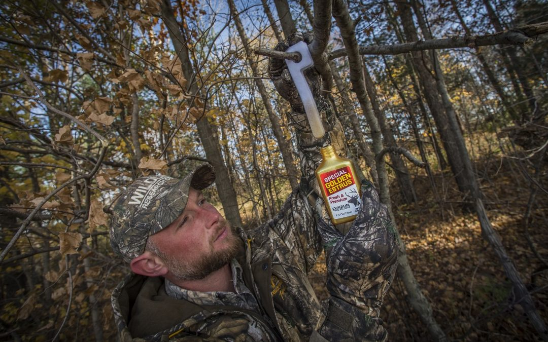 Stop Dreaming, Start Hunting: Overcome these 3 excuses for not making a hunting trip