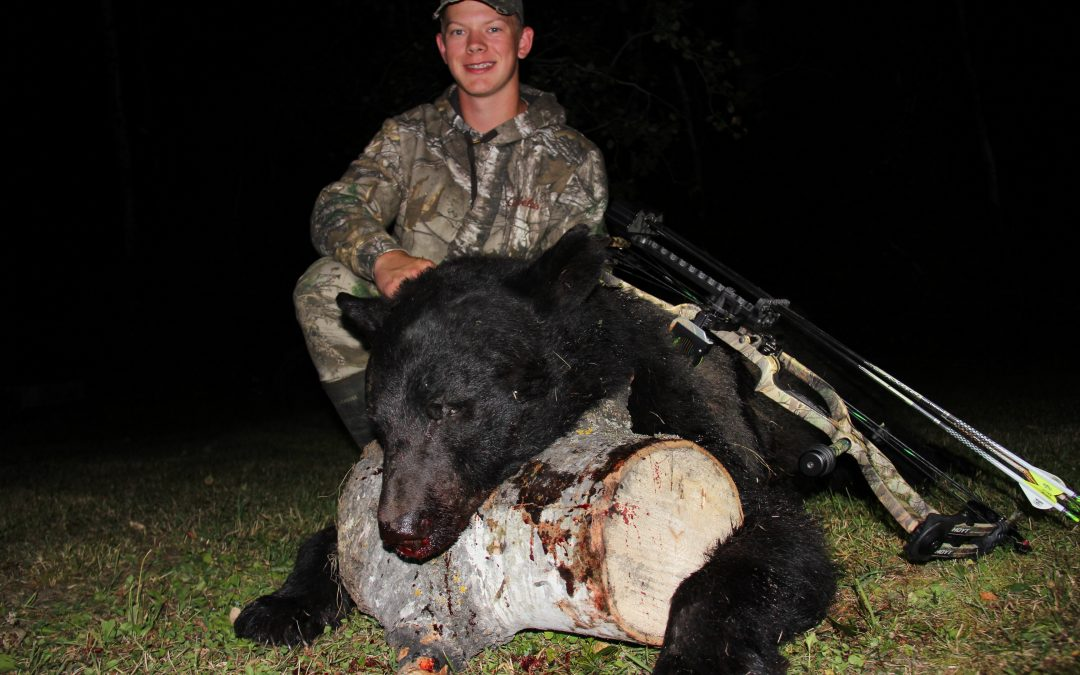 Semi-Guided bear hunting success in Ontario