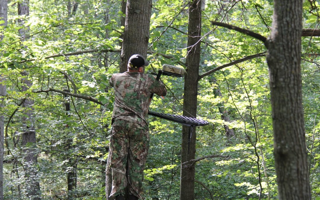 Aggressive Tactics for Early Season Whitetails